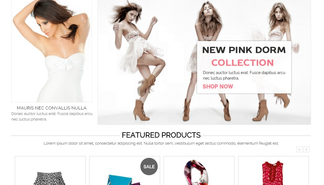 Home page lower, BigCommerce themes
