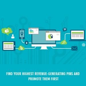 Find your highest revenue-generating pins and promote them first
