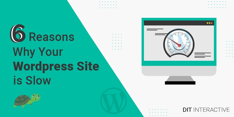 6 Reasons Why Your Wordpress Site is Slow